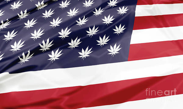 Digital Art - Legalize In Usa by Benny Marty