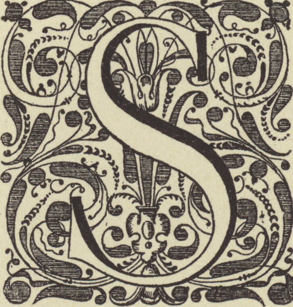 Renaissance Drawing - Letter S by French School