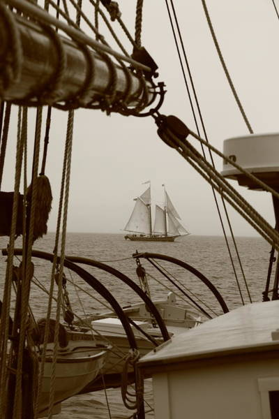 Schooner Photograph - Lewis R French by Doug Mills