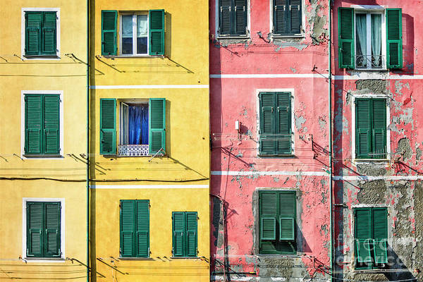 Wall Art - Photograph - Life In Color by Evelina Kremsdorf