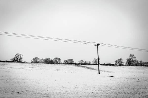 Photograph - Line Across The Snow by Raelene Goddard