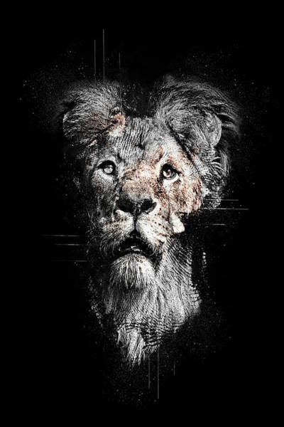 Mamal Digital Art - Lion by Anja Wessels