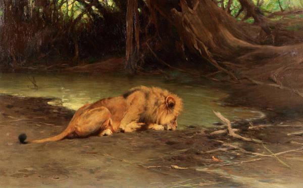 Mountain Lion Painting - Lion by Friedrich Wilhelm Kuhnert