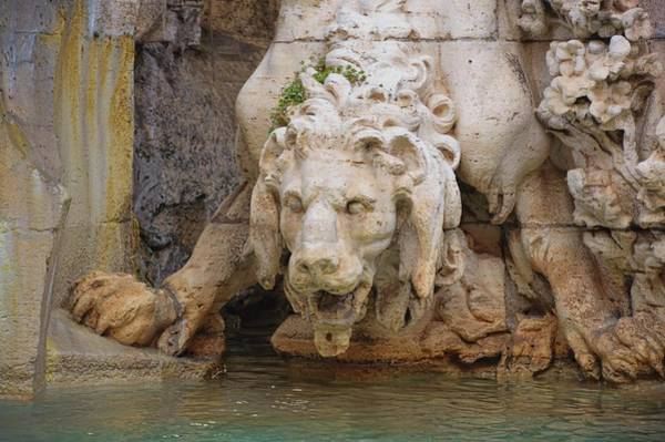 Photograph - Lion In The Fountain by JAMART Photography