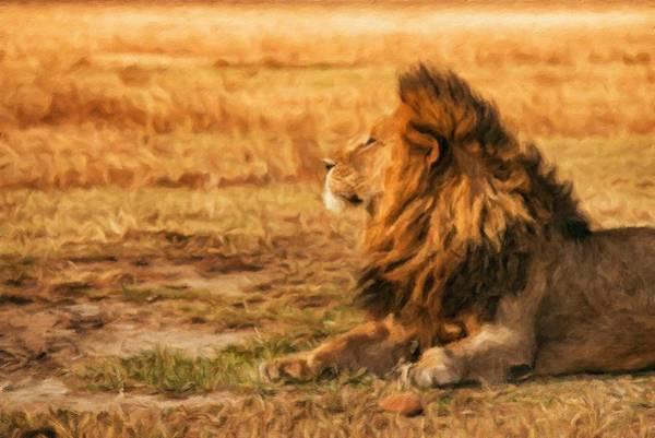 Behaviour Digital Art - Lion Resting In The Ngorongoro Crater by Miroslav Liska