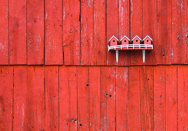 Wall Art - Photograph - Little Bird Houses by Todd Klassy