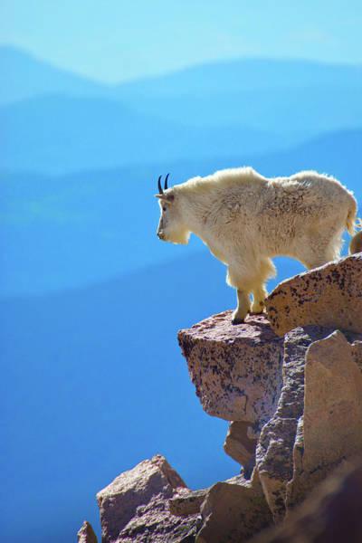 Photograph - Living On The Edge by John De Bord