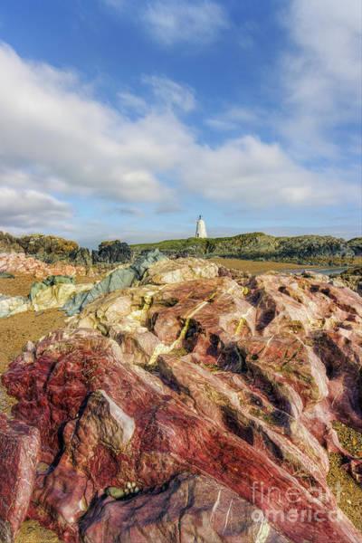 Photograph - Llandwyn Island by Ian Mitchell