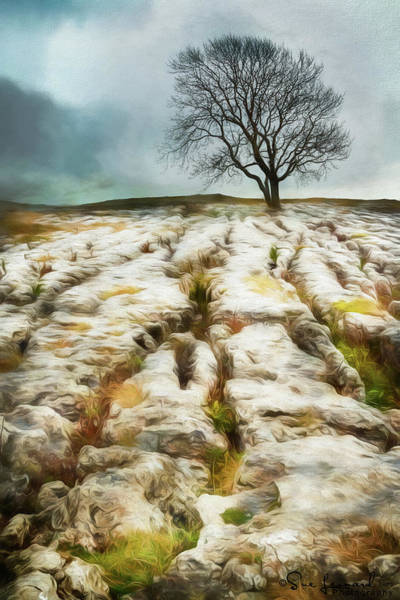 Photograph - Painted Effect - Lone Tree by Susan Leonard
