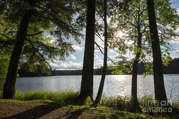 Photograph - Long Lake Afternoon by Kevin McCarthy