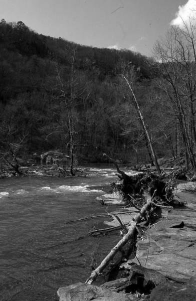 Photograph - Long-pool-log-jam by Curtis J Neeley Jr
