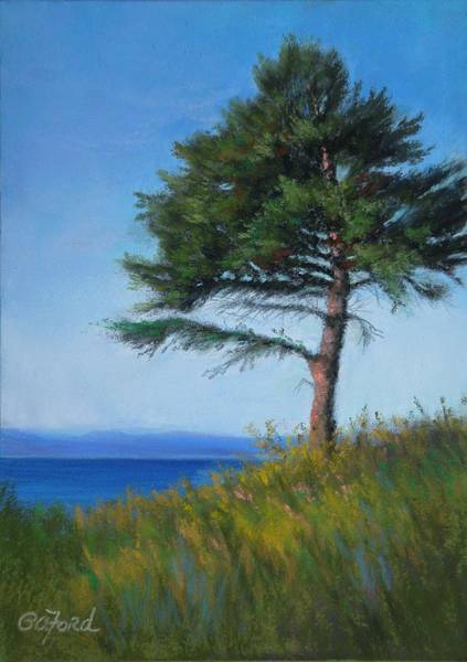 Wall Art - Painting - Lookout Over Blue Lake by Paula Ann Ford