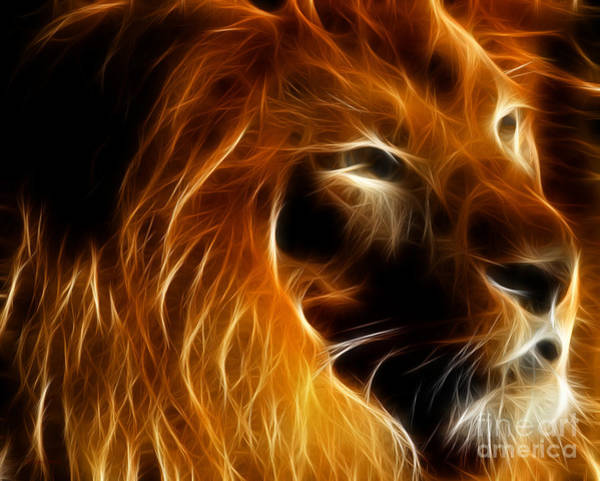 Photograph - Lord Of The Jungle by Wingsdomain Art and Photography