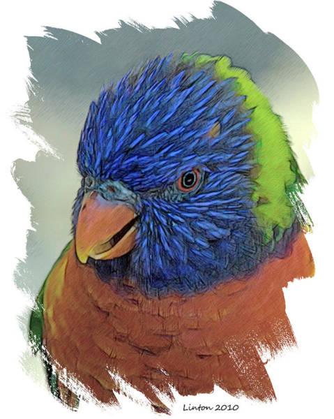 Digital Art - Lorikeet by Larry Linton