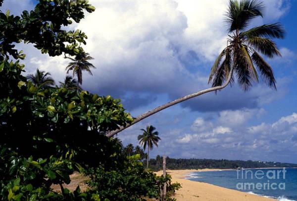Photograph - Los Tubos Beach by Thomas R Fletcher