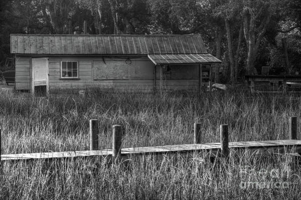 Photograph - Lowcountry Magic by Dale Powell