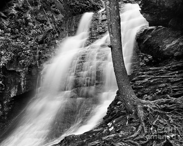 Nc State Wall Art - Photograph - Lower Cascade 2 by Patrick M Lynch