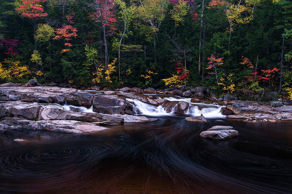 Photograph - Lower Falls by Gary Lengyel