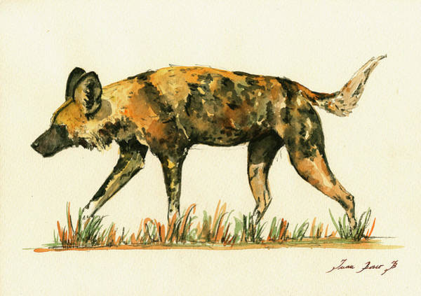 Wall Art - Painting - Lycaon Wild Dog by Juan  Bosco