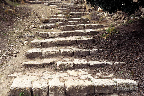 Jewish Homeland Photograph - Maccabean Steps St Peter In Gallicantu by Thomas R Fletcher