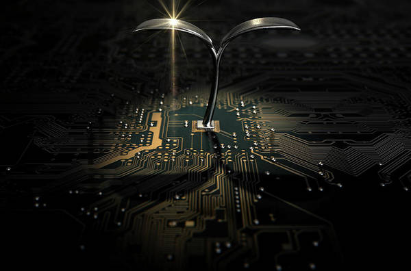 Flora Digital Art - Macro Circuit Board With Futuristic Plant by Allan Swart
