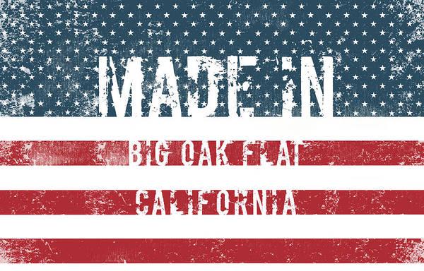 California Oak Digital Art - Made In Big Oak Flat, California by Tinto Designs