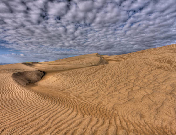 Photograph - Magic Of The Dunes by Beth Sargent