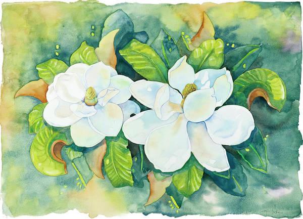 Magnolias Art Print by Cathy Locke