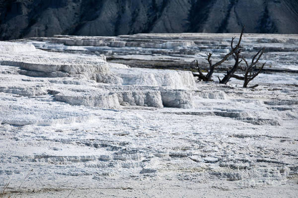 Yellowstone Photograph - Mammoth Terraces by Delphimages Photo Creations