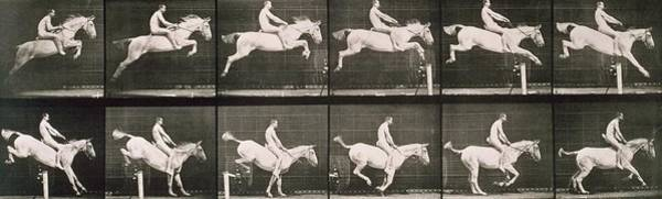 Dressage Wall Art - Photograph - Man And Horse Jumping A Fence by Eadweard Muybridge