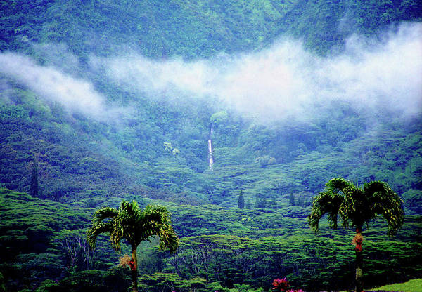 Wall Art - Photograph - Manoa Mist by Kevin Smith