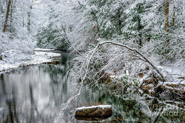Photograph - March Snow Cranberry River by Thomas R Fletcher