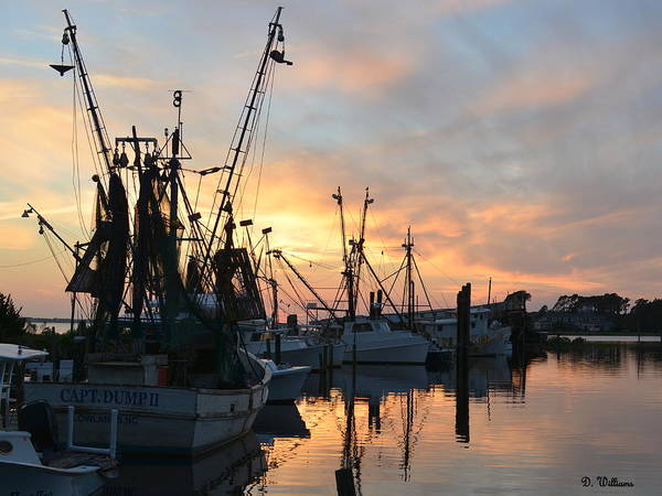 Photograph - Marshallberg Harbor Sunset by Dan Williams