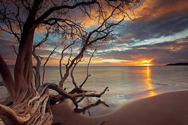 Kihei Photograph - Maui Magic by James Roemmling