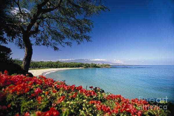 Wall Art - Photograph - Mauna Kea Beach by Dana Edmunds - Printscapes