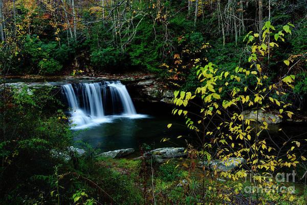 Birch River Photograph - Mccoy Falls Birch River by Thomas R Fletcher