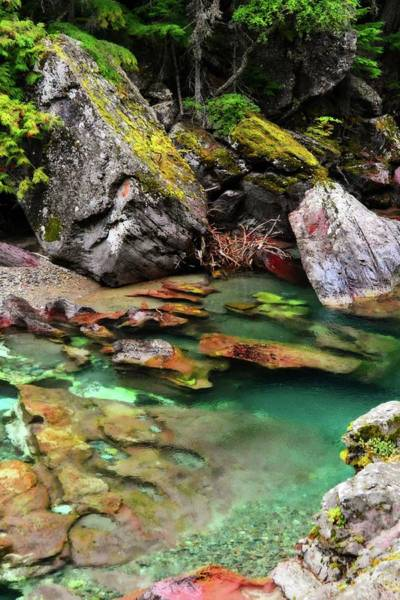 Photograph - Mcdonald Creek 11 by Marty Koch