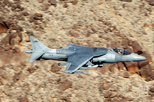 Av-8 Photograph - Mcdonnell Douglas Av-8b Harrier II Dd-08 Us Navy Vx-31 Dust Devils  by Jason O Watson