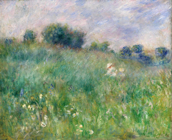 Wall Art - Painting - Meadow by Pierre-Auguste Renoir