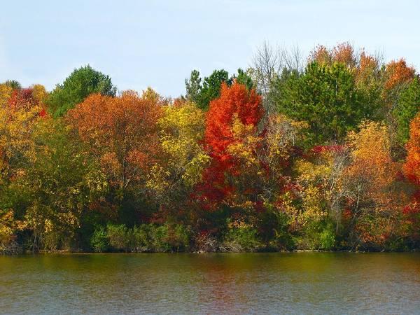 Michigan Fall Colors Art Print