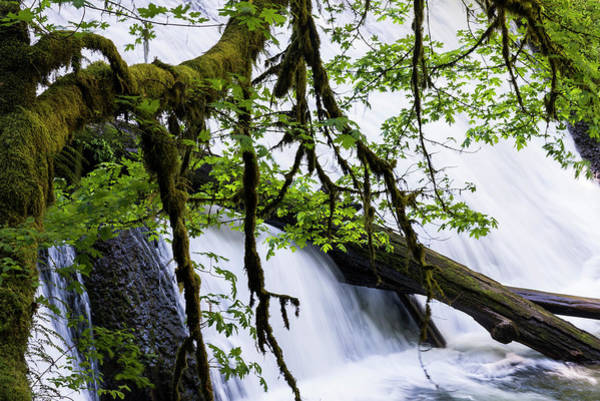 Photograph - Lower North Falls by Robert Potts