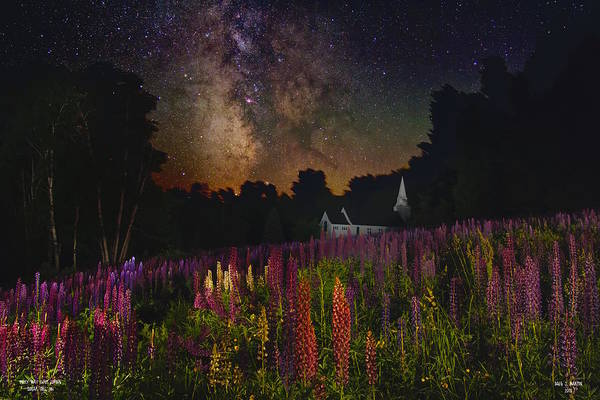 Photograph - Milky Way Over Lupine by Dale J Martin