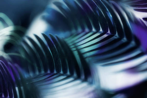 Mimosas Photograph - Mimosa Leaf Abstract 2 by Mike Eingle