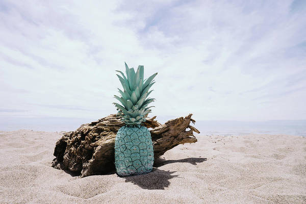 Wall Art - Photograph - Mint Pineapple by Happy Home Artistry