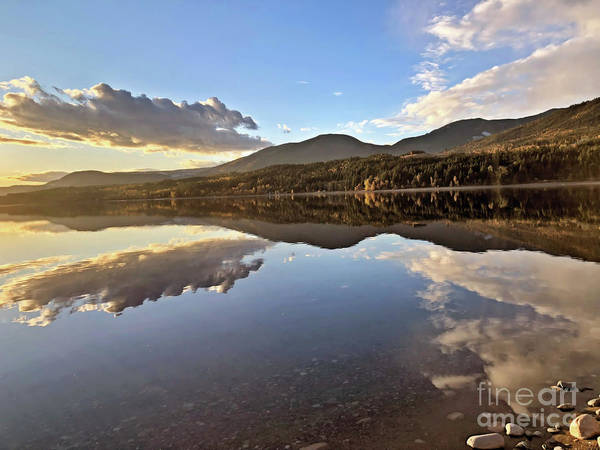 Photograph - Mirror Image by Victor K