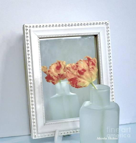Wall Art - Photograph - Mirror Mirror On The Wall by Marsha Heiken