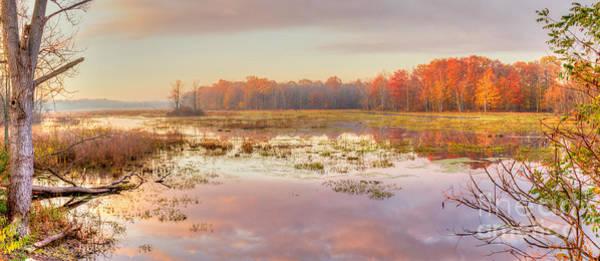 Photograph - Misty Morning II by Rod Best