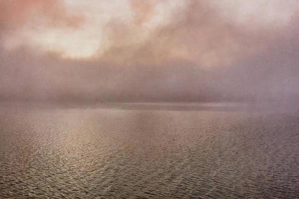 Photograph - Misty Morning by Tom Singleton
