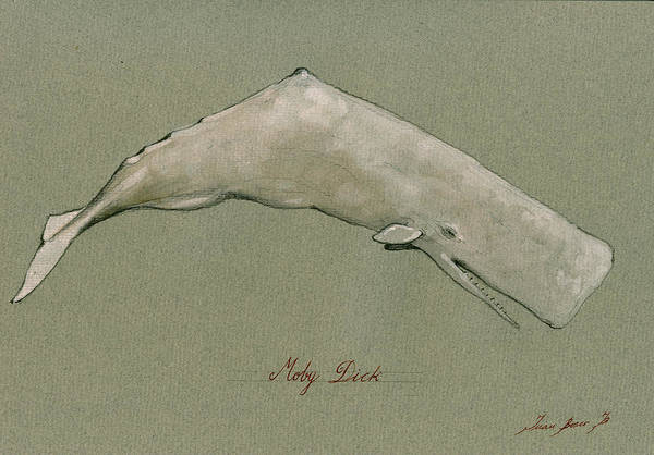Wall Art - Painting - Moby Dick The White Sperm Whale  by Juan  Bosco