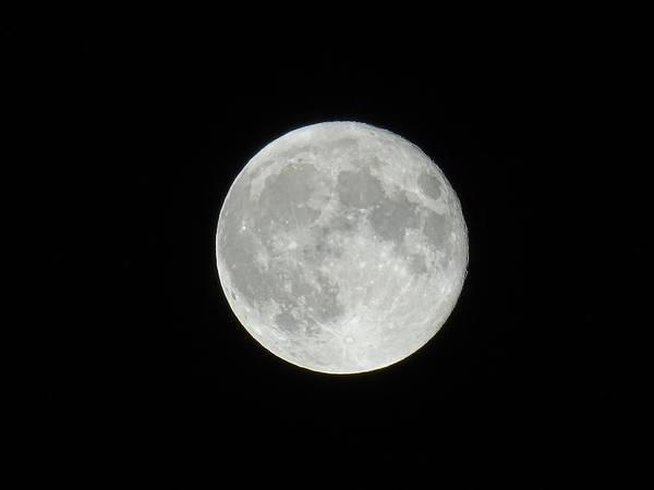 Photograph - Moon by Artistic Panda